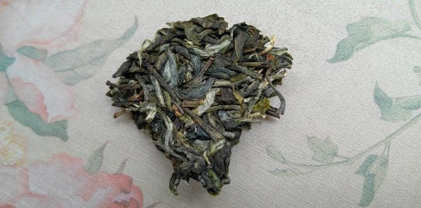 xigui sheng pu erh tea dry