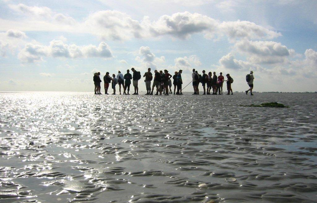Sportiviteit wadlopen Texel