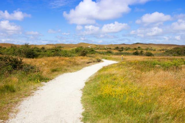 Fietsen route natuur Texel