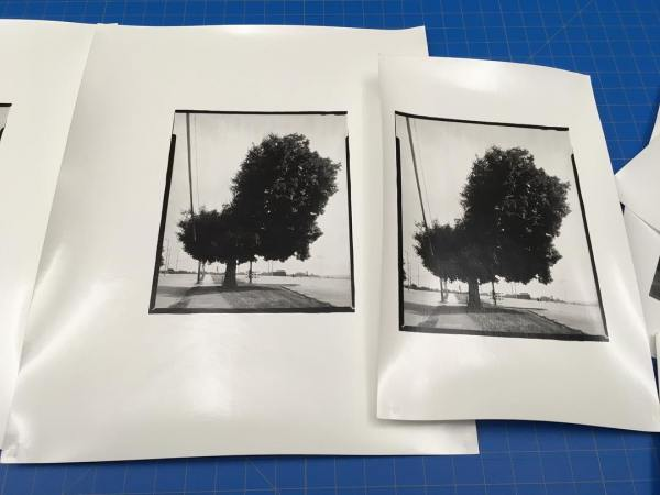 Work prints