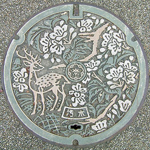 Circle manhole art