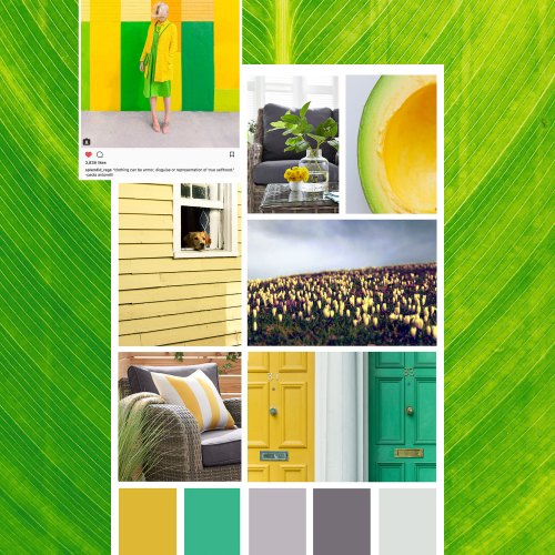 green and yellow decor mood board
