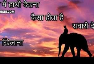 Sapne Me Hathi Ka Dekhna Kaisa Hota Hai | Bachcha Dekhna | Sawari Dekhna