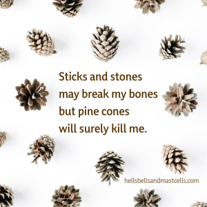 Sticks and stones may break my bones, but pine cones will surely kill me