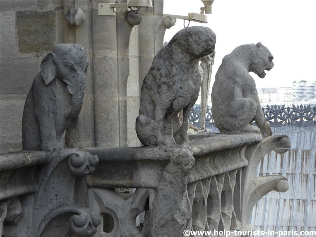 Fantasiefiguren Fassade Notre Dame Paris