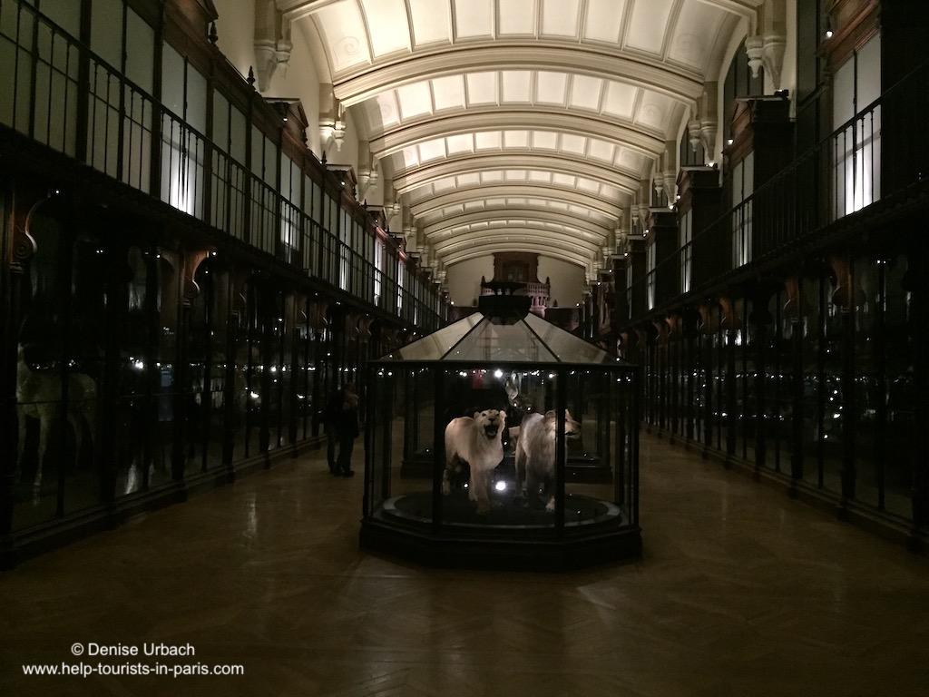 Naturkundemuseum Paris gefährdete Tierarten