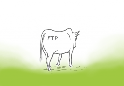 FTP in the Cloud