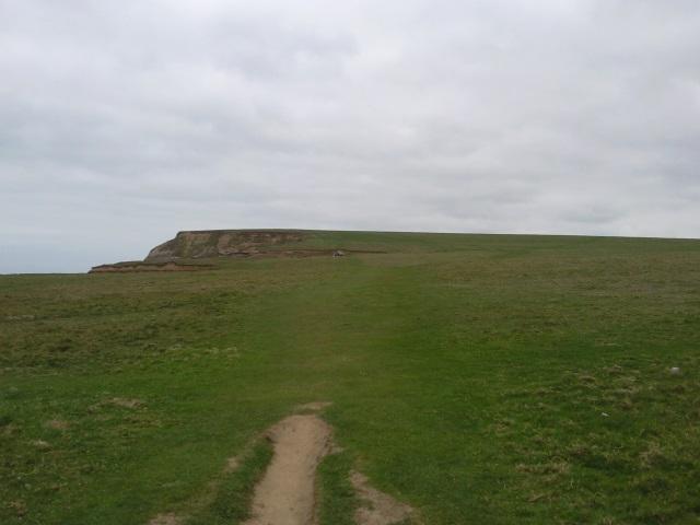 Level grassy cliff top