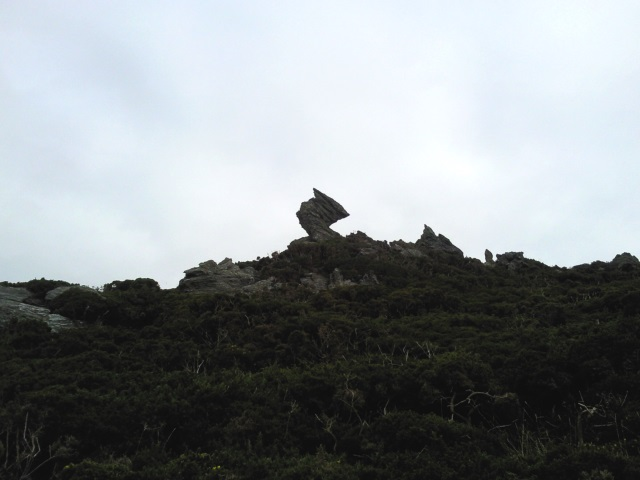 A particularly jagged rock