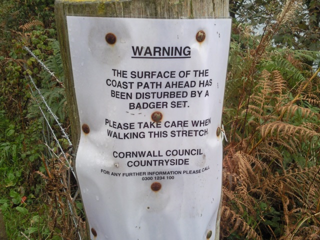 Sign: Warning. The surface of the path ahead has been disturbed by a badger set. Please take care when walking this stretch. Cornwall Council Countryside.