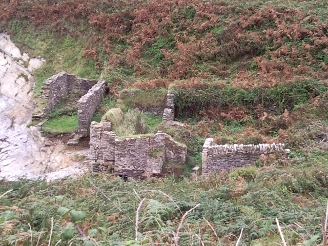 Overgrown ruins in a small valley, right next to a low cliff edge