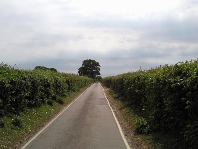 A single-track road
