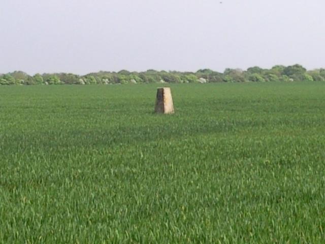a trig pillar in a flat, open field