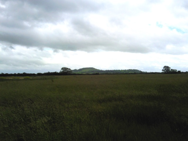 Brent Knoll from a distance