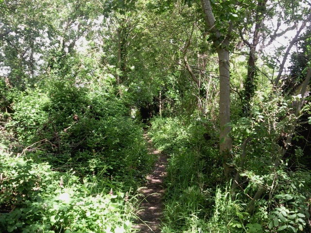 Church Path, Kewstoke