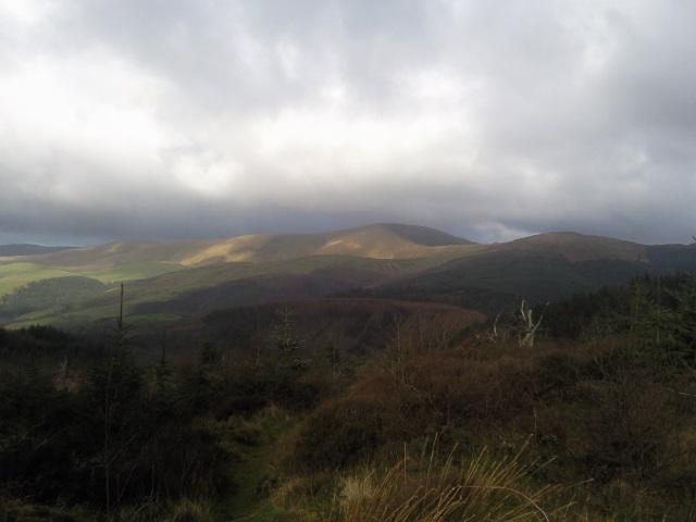 View on Foel Goch