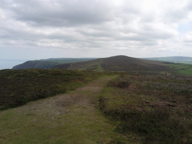 View from Great Hangman to Holdstone Down