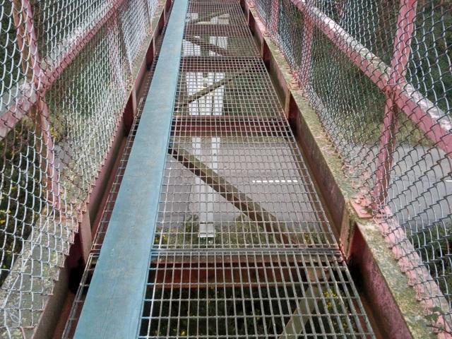 Mesh-floored bridge