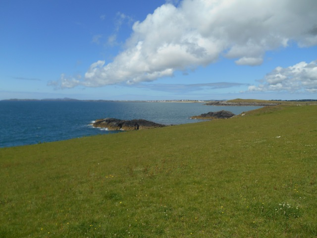 cliff tops near Ynysoedd Duon