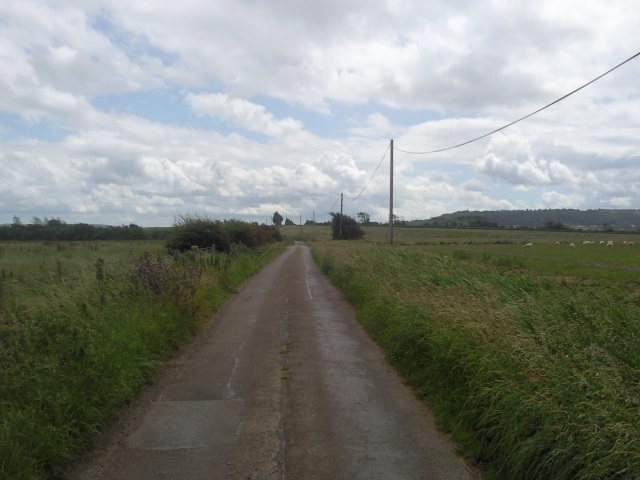 Road from Woodspring Priory towards Weston
