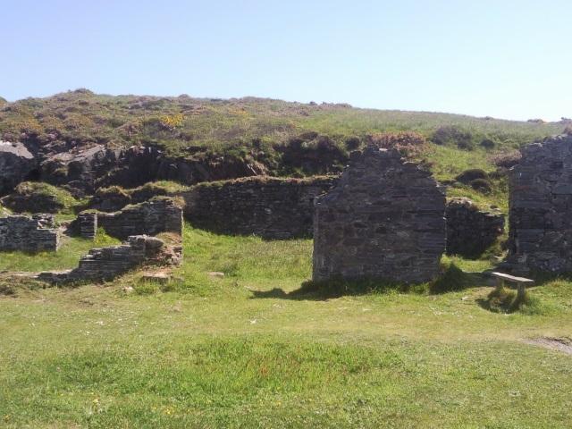 Ruin, Trwyn Llwyd