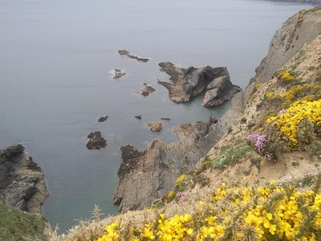 Shipwreck and rocks