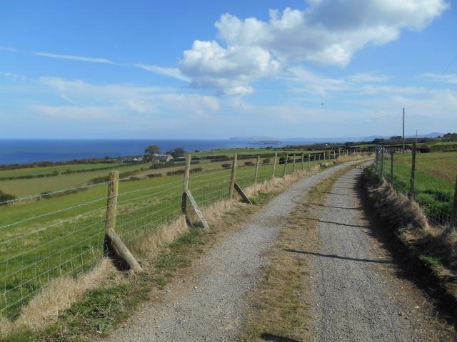 Farm track on Bwrdd Arthur
