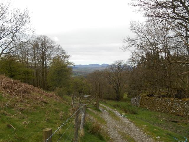 Coniston seen from near Bigland Tarn