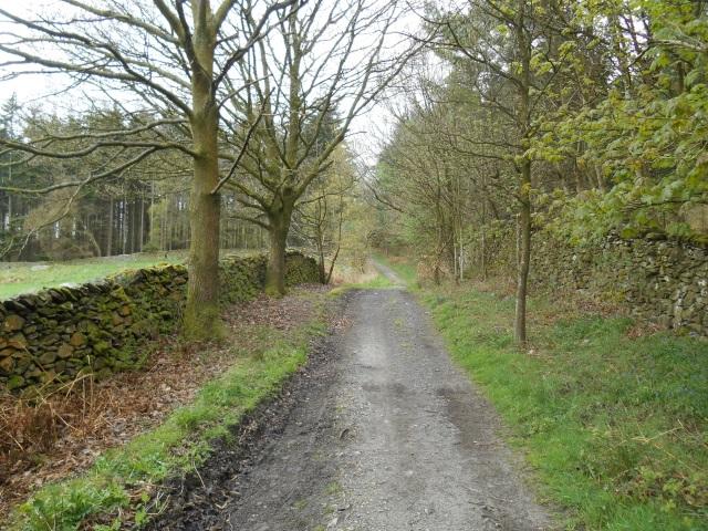 Lane near Long Scar