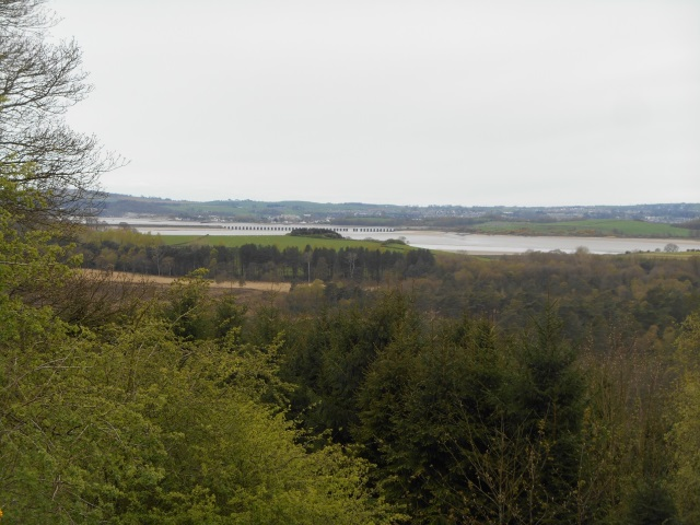 River Leven seen from Speel bank