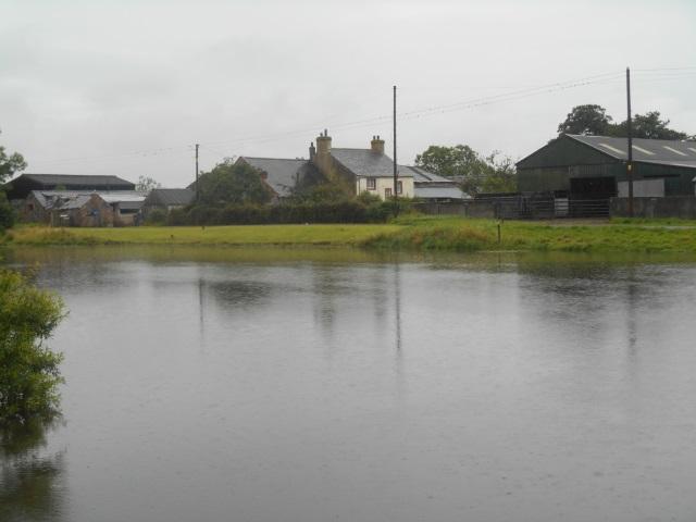 Salt Coates pond