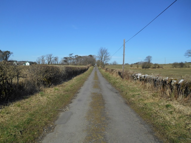 The road from Borness to Borgue