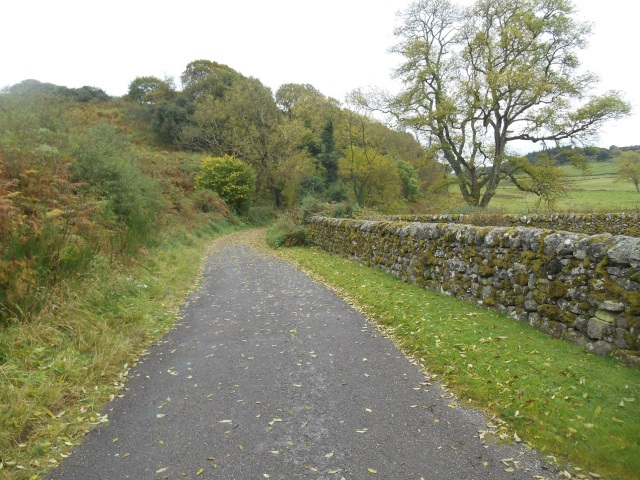 Narrow country road towards Old Orchardton