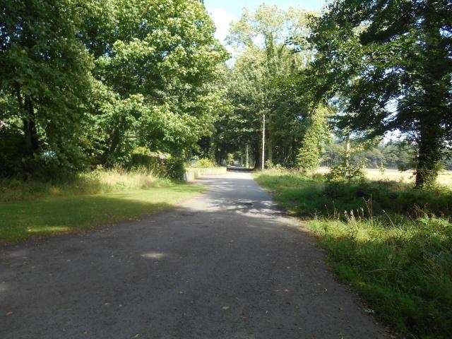 Piper's Brae - a broad driveway