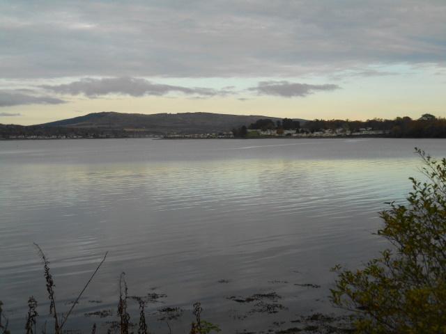 Rosneath Bay