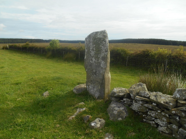The Yaxing Stane - a lone standing stone at the end of a dry stone wall