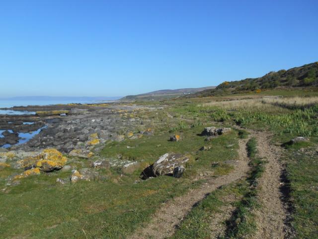 Cleats Shore