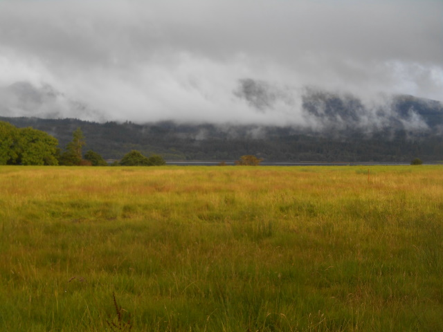 Clouds over Barcaldine Forest