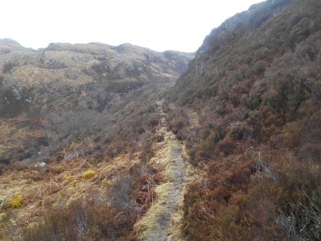 narrow path by Allt Eiligadale