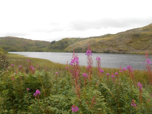 Loch Seil