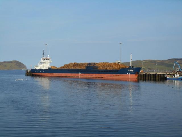 MV Fri Ocean and a huge pile of logs