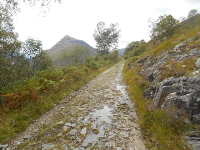 The Old Military Road