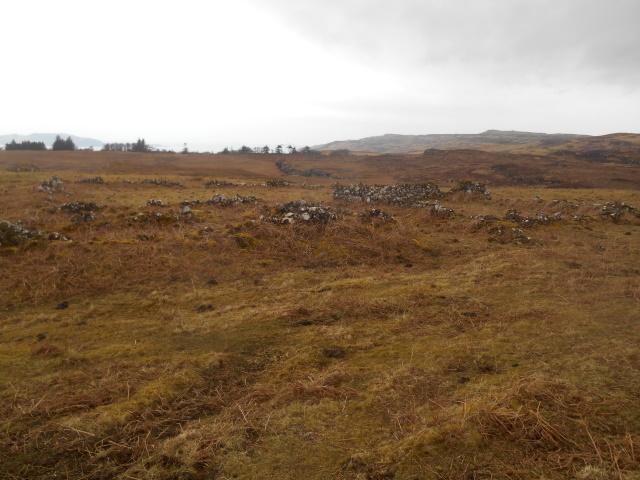 Ruined sheepfolds