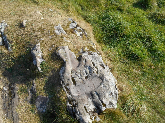 St Colmba's Footprint. Allegedly.