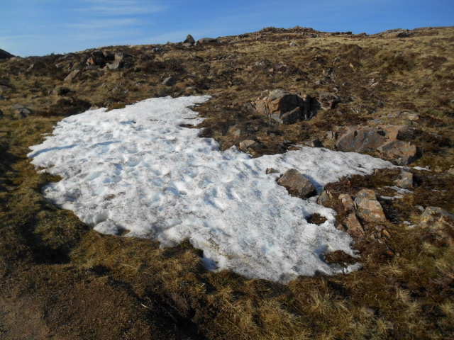 One single, tiny patch of snow