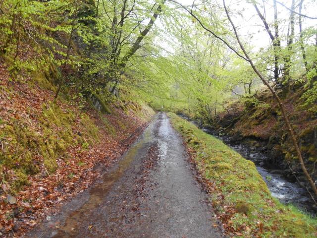 Loch-na-Gaul Road