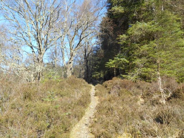 Footpath to Achintraid