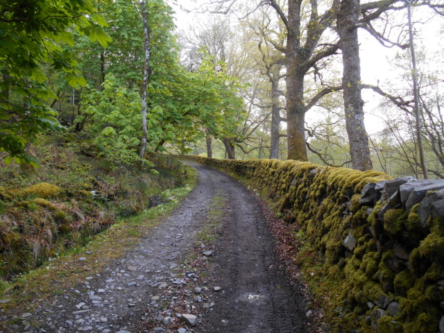 Road out of Inverie