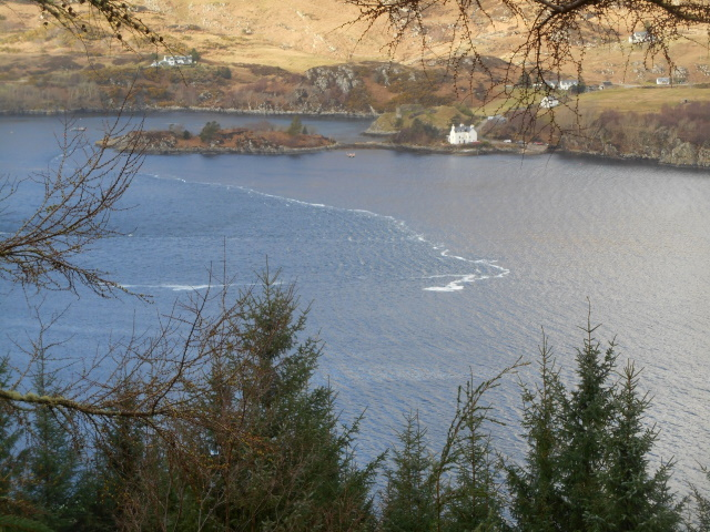Tidal current in Loch Carron