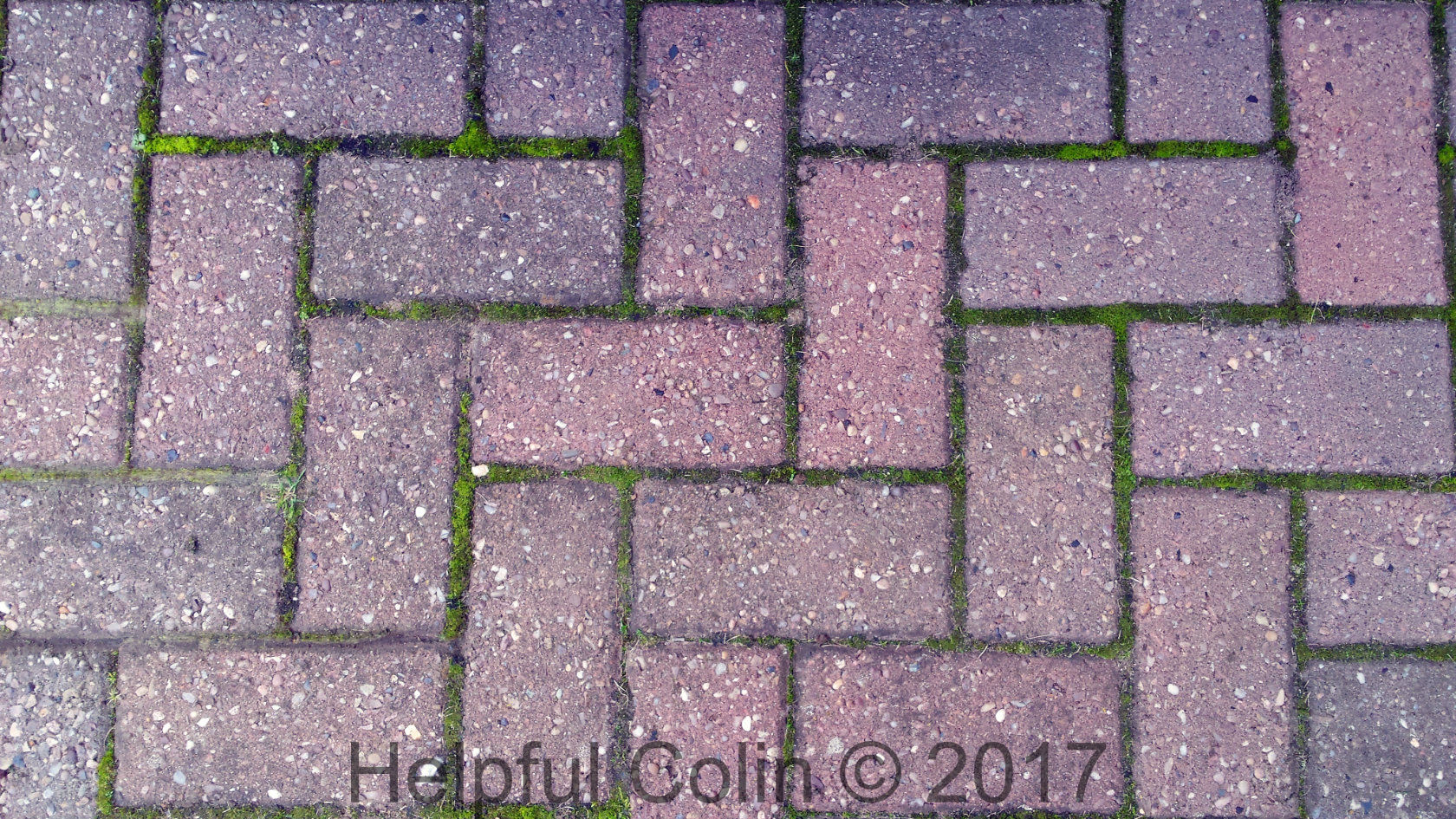 Removing Block Paving Moss From My Driveway